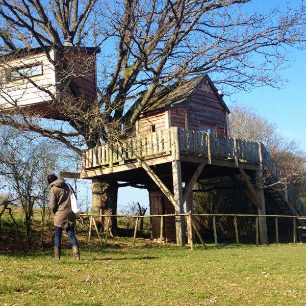 Een krakende boomhut in de Belgische Ardennen
