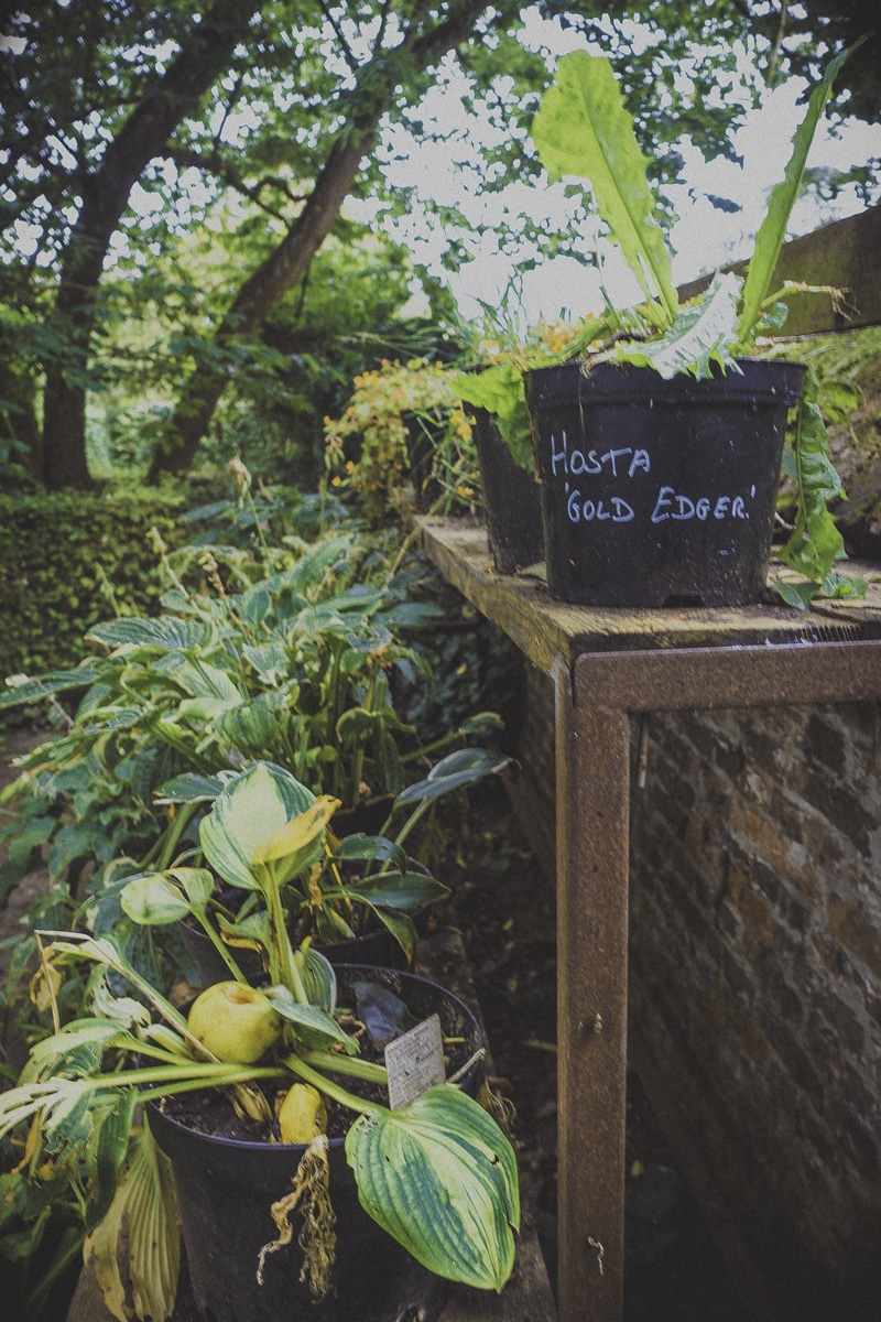 Op deze Belgische reisblog vind je vele foto's.