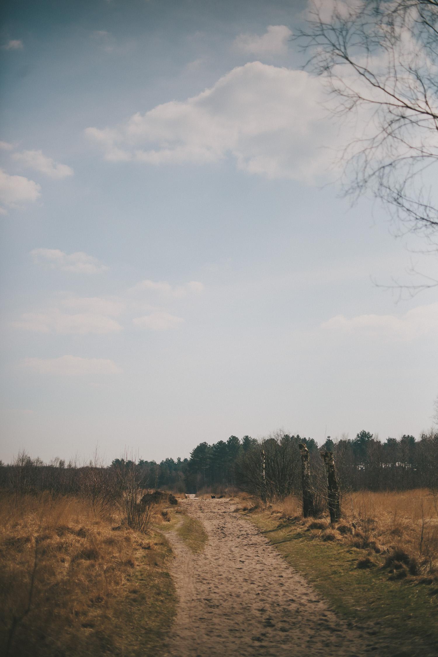 Wandelen in de Kalmthoutse heide