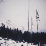 Slowakije Tatra gebergte