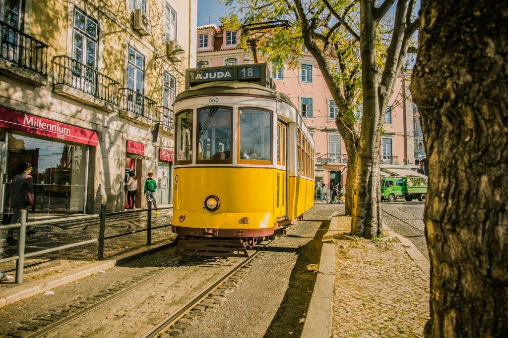 Boefjes in Lissabon