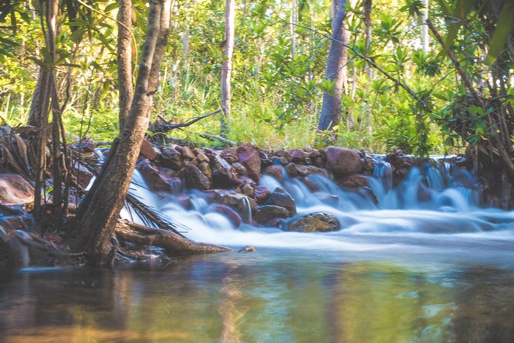 Zwemmen in Litchfield en Kakadu