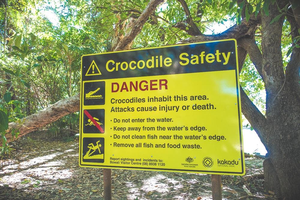 krokodillen veiligheid