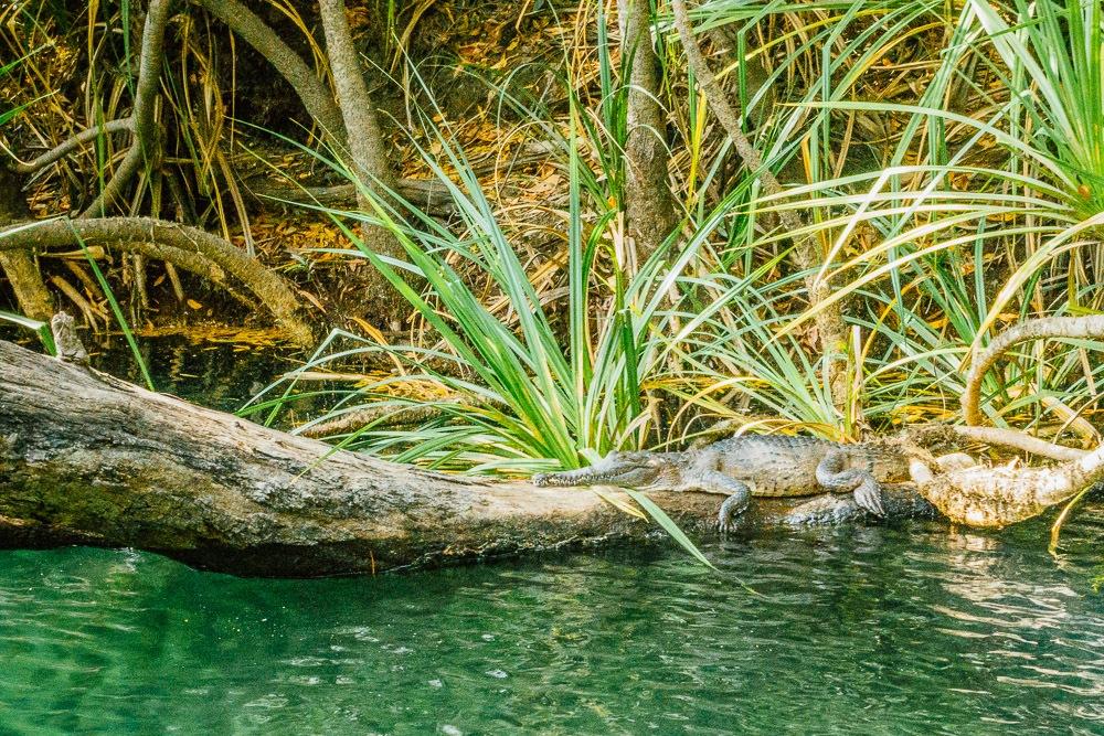 welke nationale parken bezoeken australie