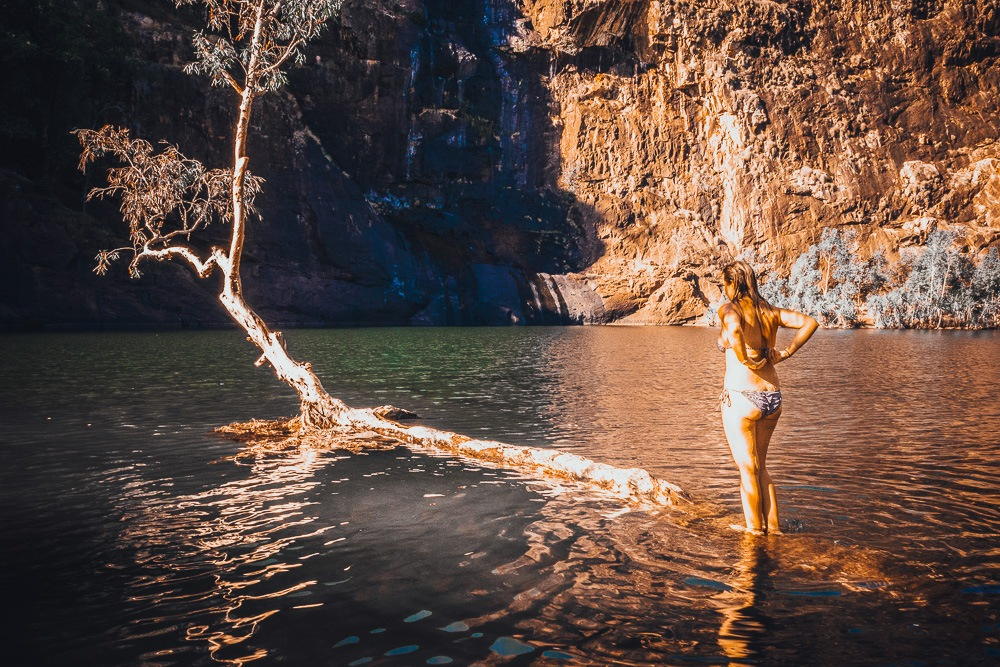Maguk Gorge kakadu