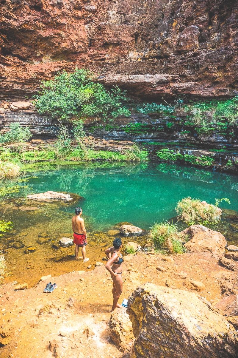 wildzwemmen australie