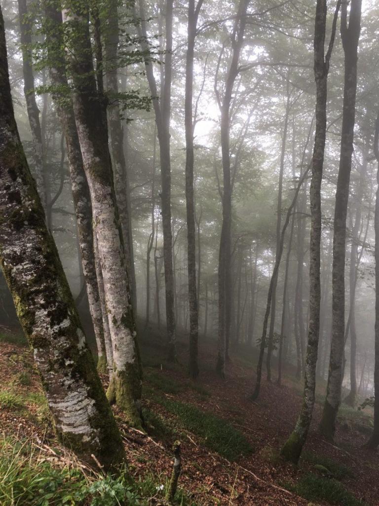 Fietstocht Compostela