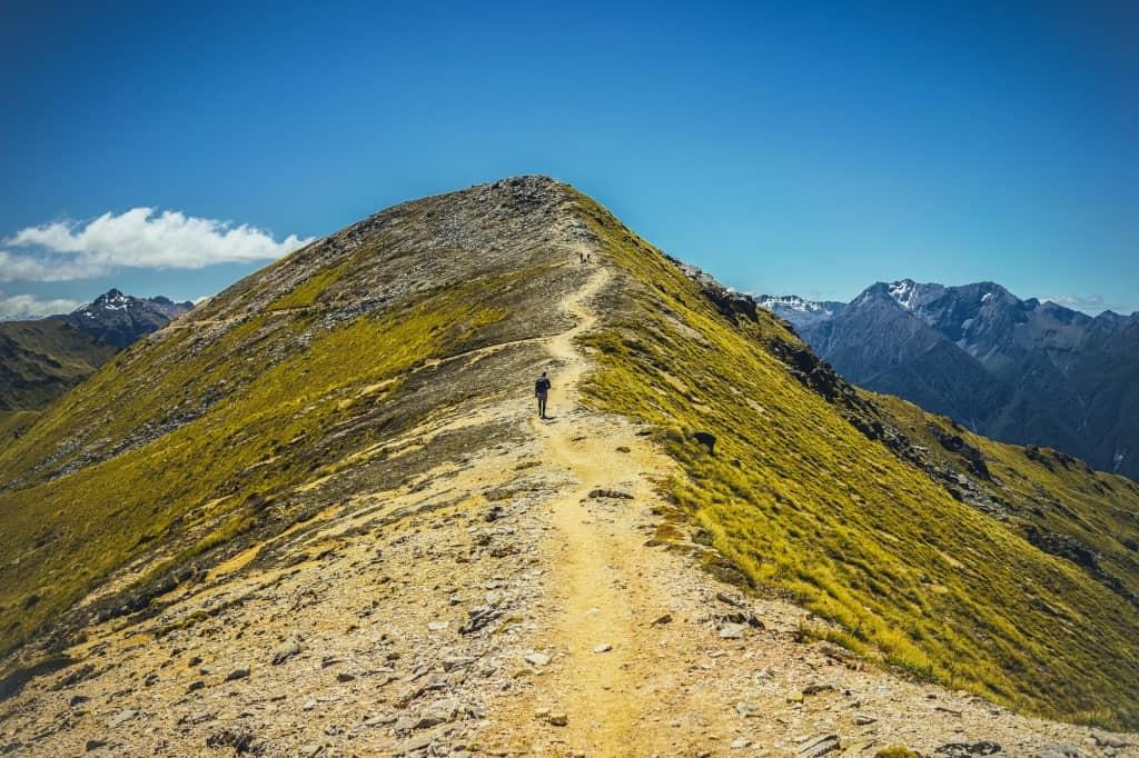 fiordland kepler track