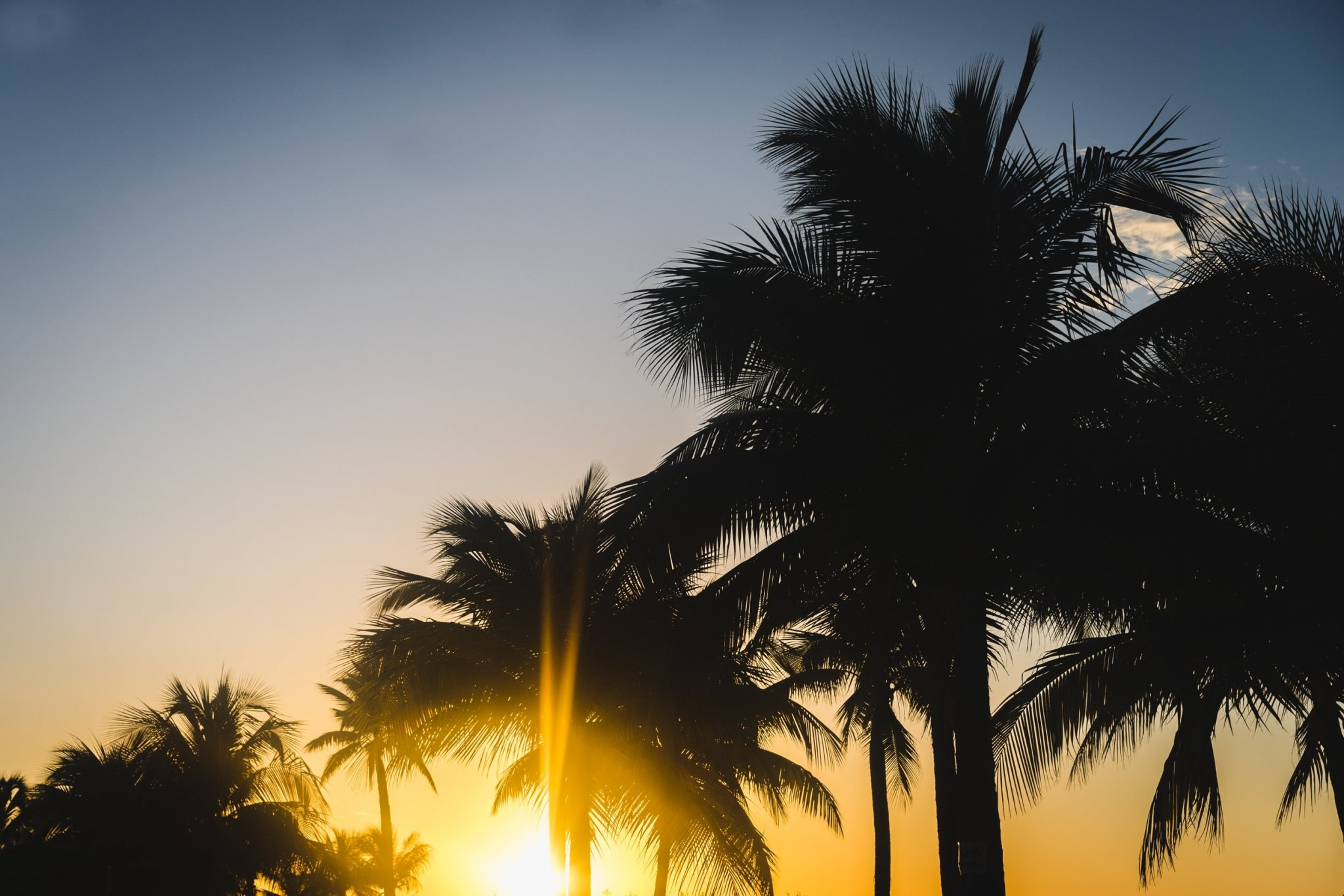 jamaica reis tips