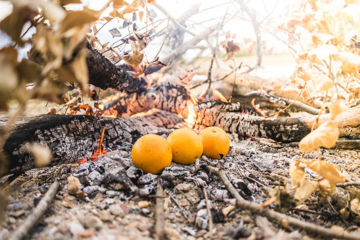 koken op kampvuren