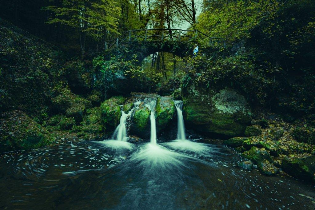 Op elfenjacht in de magische sprookjesbossen van Luxemburg