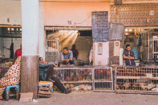 In beeld: De stoffige Souk van El Had in Agadir