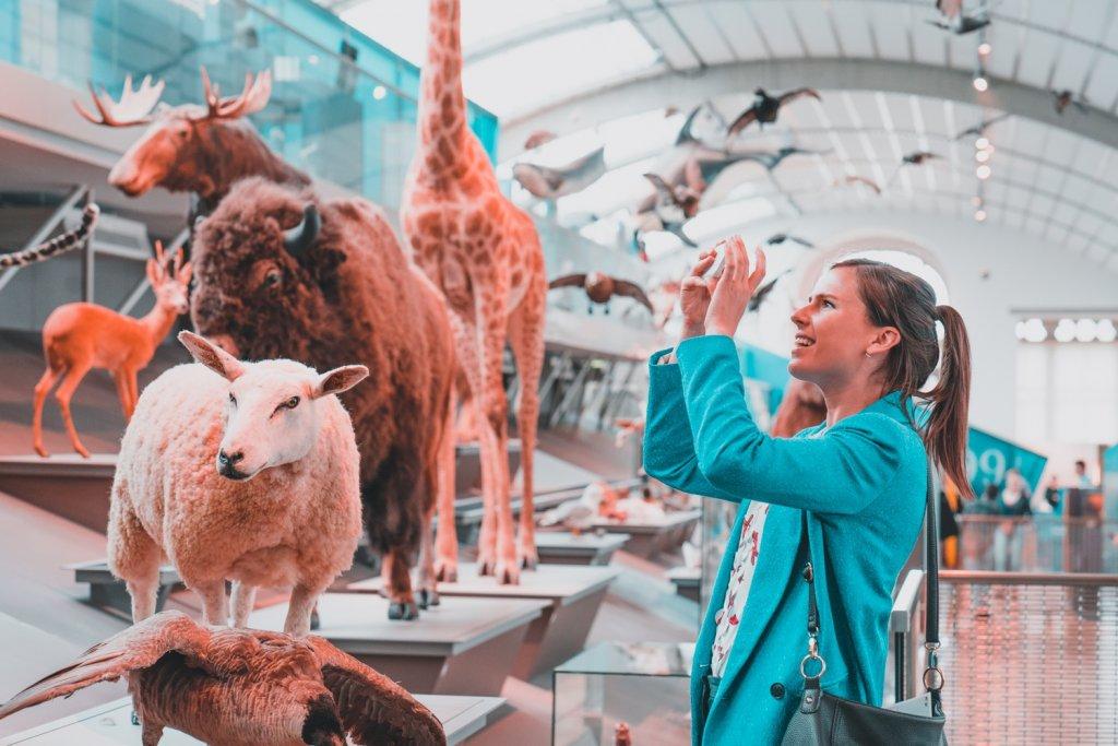 wetenschapsmuseum bezoeken in brussel