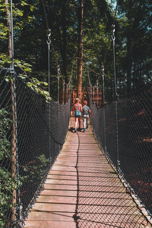 kamperen tussen wilde dieren