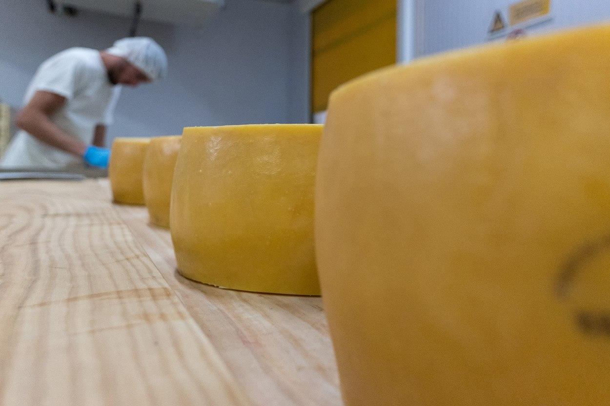 sao jorge cheese