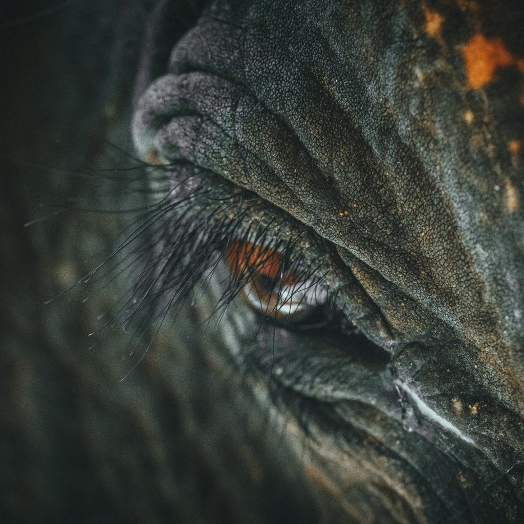 waar best olifanten zien in thailand