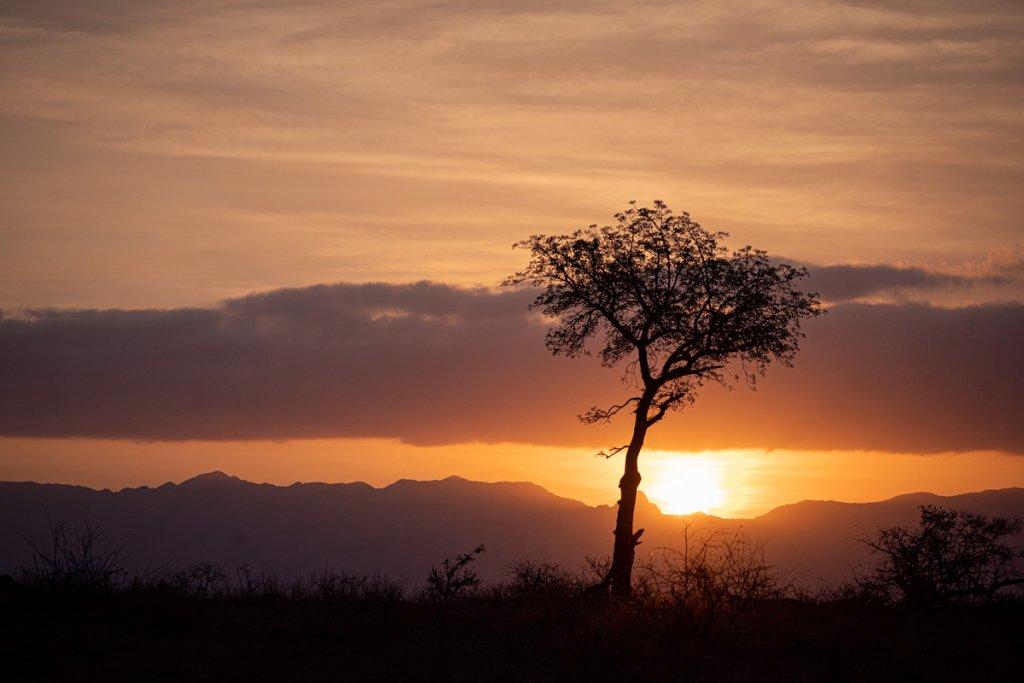 zonsondergang safari kruger park