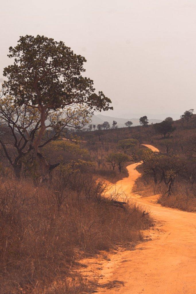 welke parken bezoeken afrika