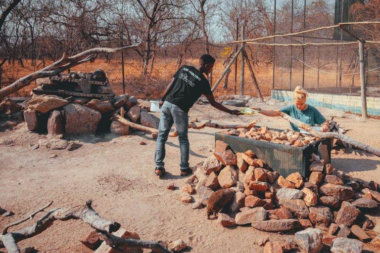 wildlife camp afrika werken