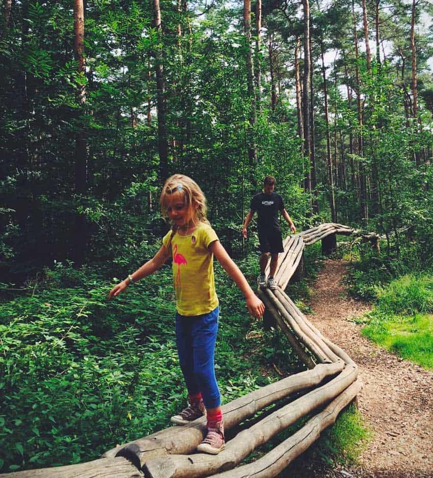 Wildkamperen in Belgie