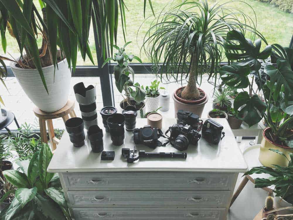 lenzen en camera voor reisfotografie