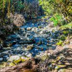 kepler track hiken nieuw zeeland