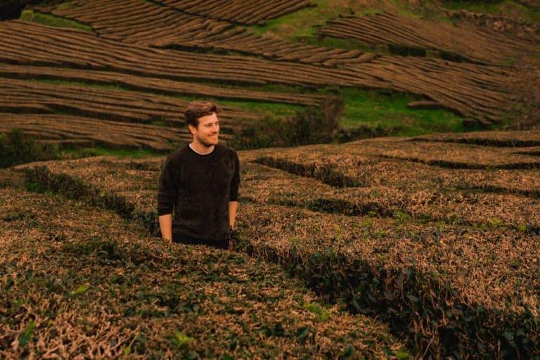 thee plantage azoren