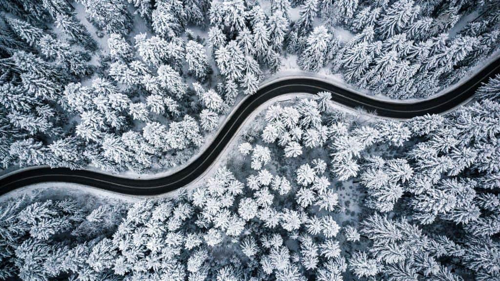 Een roadtrip langs oerbossen, bergtoppen en gebraden varkenshiel