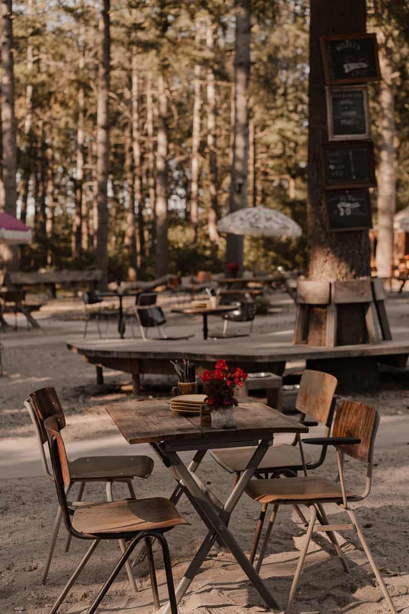beste camping van nederland hartje groen maashorst