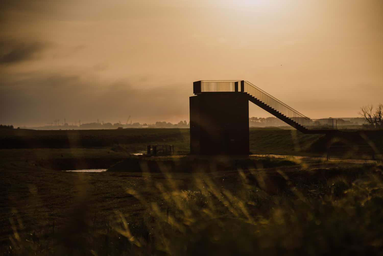 biesbosch bij zonsopgang