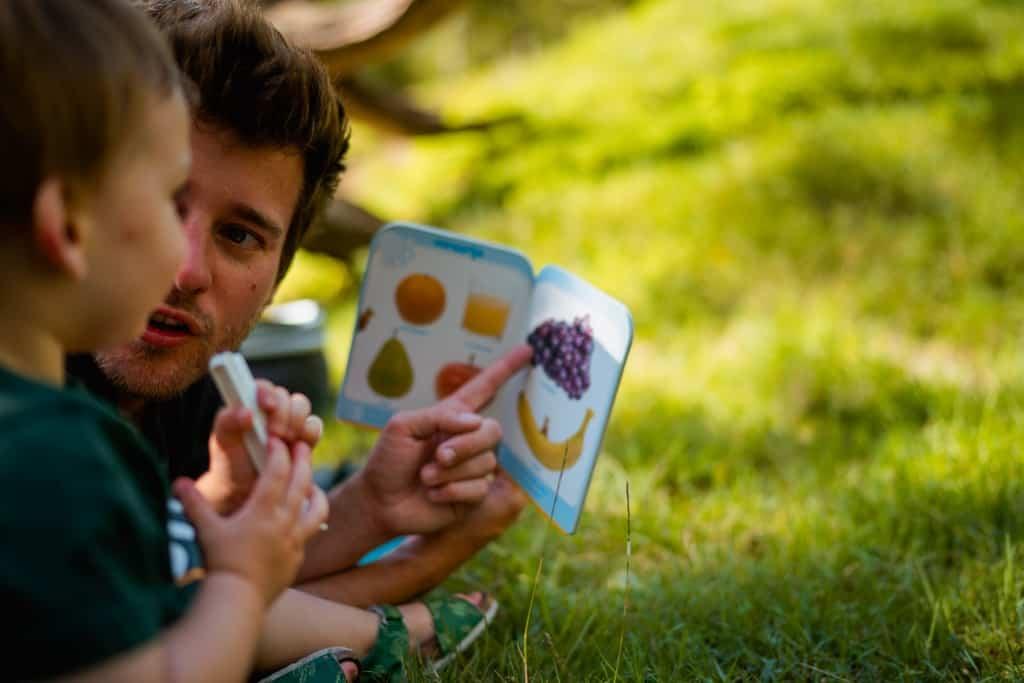 picknicken in oost vlaanderen