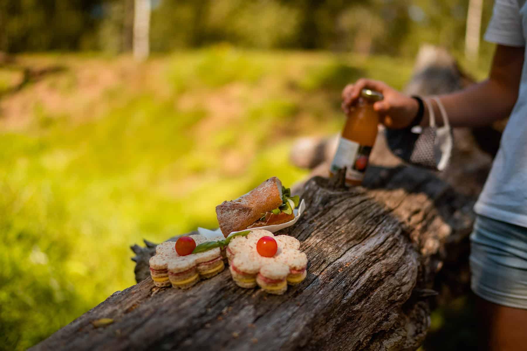 picnic hoevetoerisme