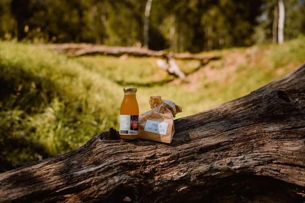 picnic oost vlaanderen