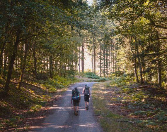 hiken in morvan frankrijk