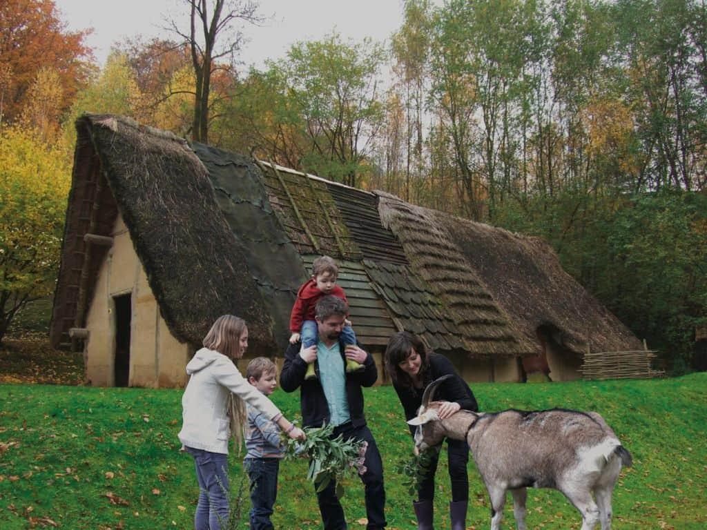 bezoek wallonie prehistorisch museum