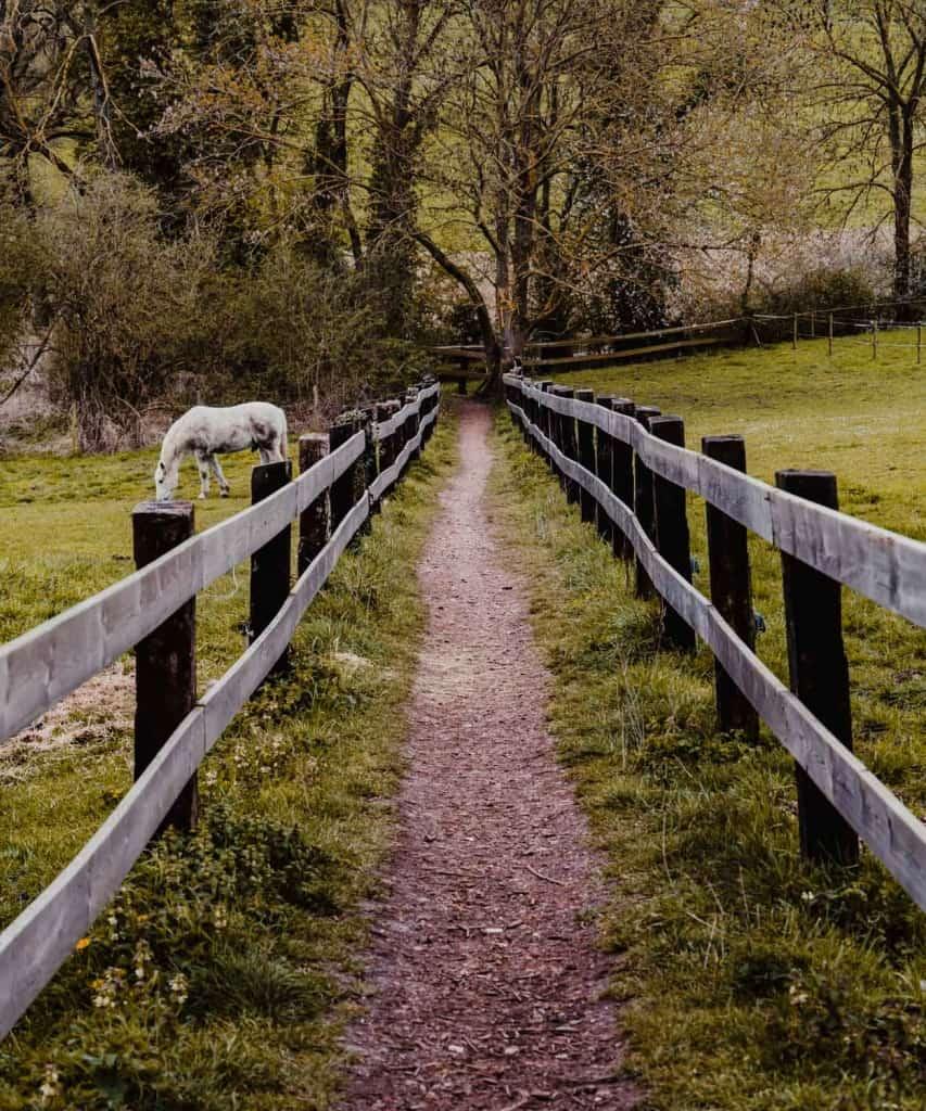 wandelen in borgloon