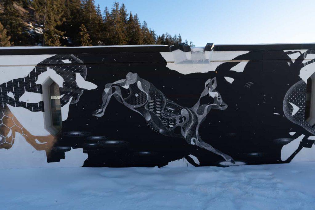 crans montana skien