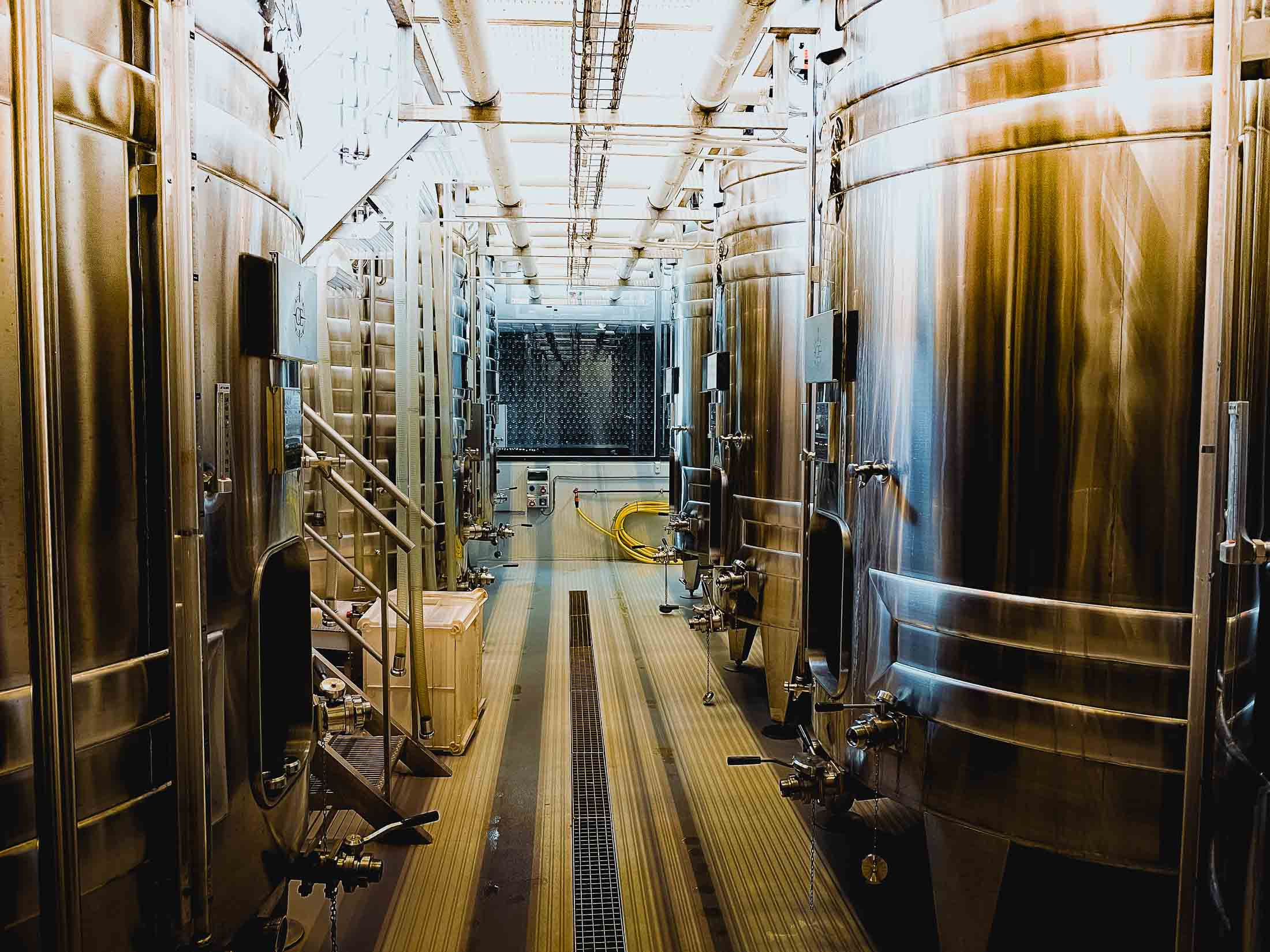 wijn domein mons belgie